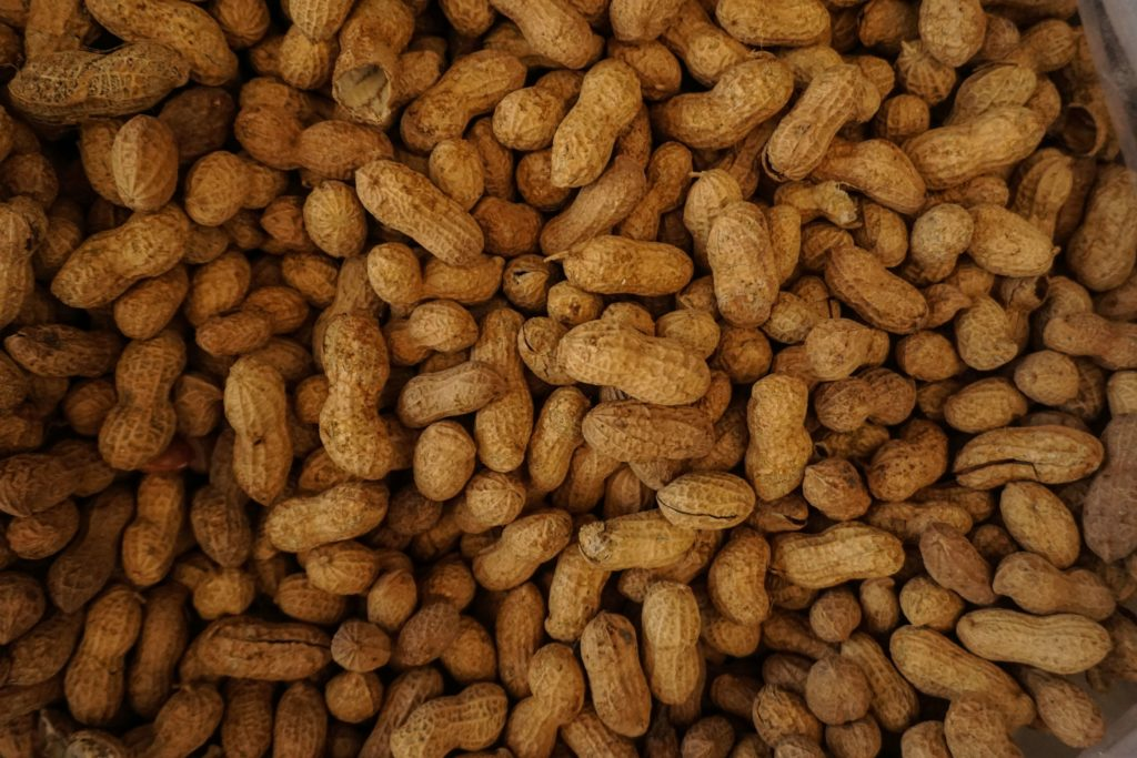 Photo of peanuts